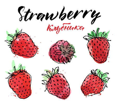 Hand drawn watercolor painting strawberry on white background. Traced watercolor illustration. Ilustração