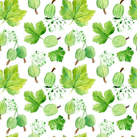 Seamless pattern with gooseberry. Watercolor work.