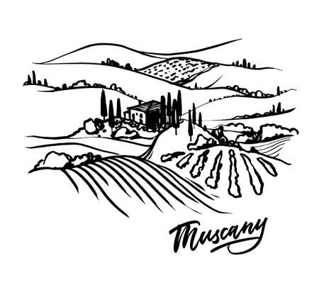 Tuscany Landscape hand drawn illustration. Vector llustration on white background. 免版税图像 - 153741461