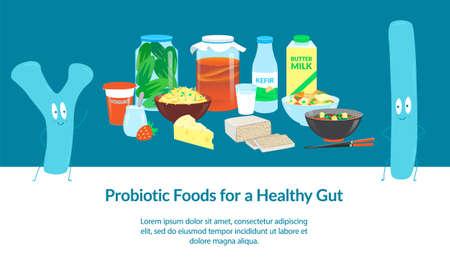 Probiotic Foods for a Healthy Gut. Banner template. Vector illustration. Vector Illustratie