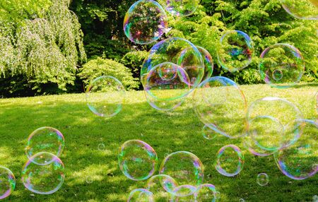 Soap bubbles, green gras, green trees Stock Photo