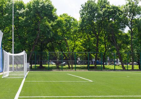 synthetic: Soccer field grass Goal at the stadium Soccer field with white lines on grass