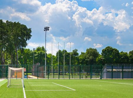 soccer field grass: Soccer field grass Goal at the stadium Soccer field with white lines on grass