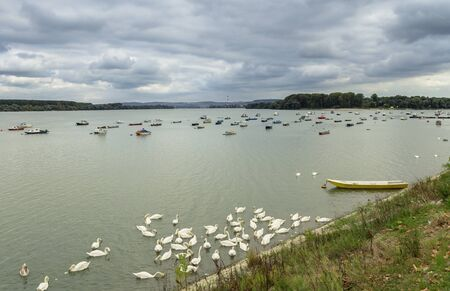 dinghies: Many small fishing boats anchored on Danube river. View from Zemun part of Belgrade. Lido beach beautiful swans Stock Photo