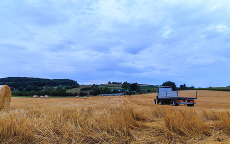 Round hay bales in field at evening and tractor with trailer. State of Vaud Switzerland Banco de Imagens