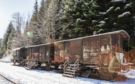 Train closeup on snowy railroad tracks at the winter time. Mountains and pinetree forest Stockfoto