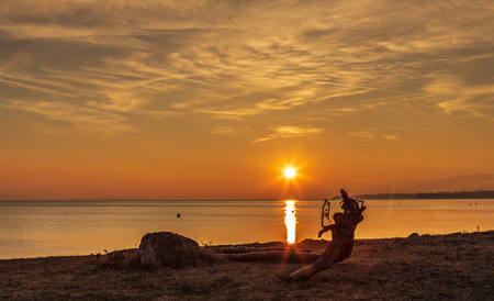 Beautiful sunset at lake Leman near the Lausanne city, Switzerland. Silhouette of a log extends near the water. Concepts of vacation, travel, relaxation, and peacefulness Standard-Bild