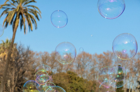 Soap bubble flying shiny colorful on beautiful park Citadel. Barcelona, Spain