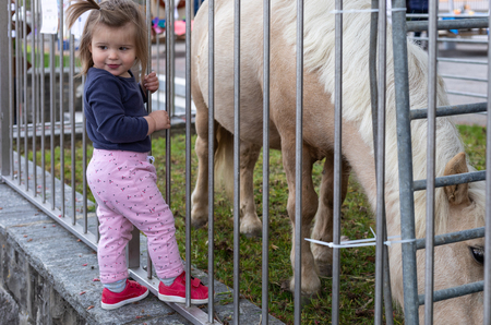 Baby girl looking the Pony horse in zoo. Outdoor photography