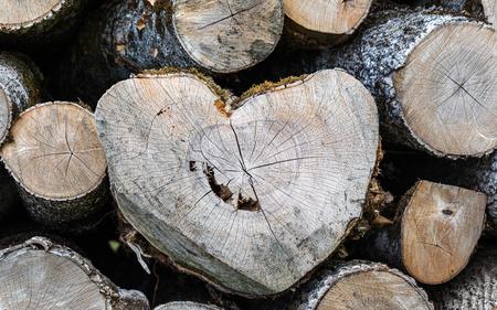 Deforestation, log deck, pile of wood. Heart shape