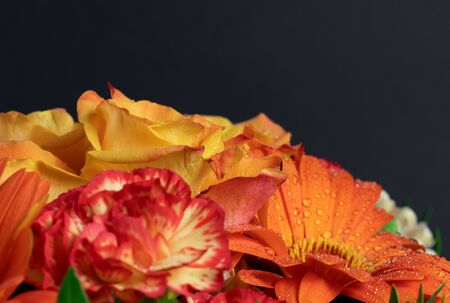 Beautiful vivid colorful mixed flower bouquet with water drops. Amazing autumn colour. Studio shot.