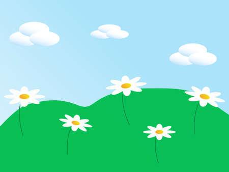 margriet: De weide met witte bloemen