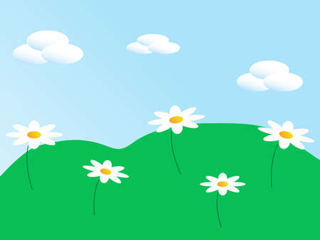 The meadow with white flowers