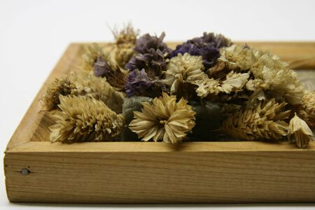 sear: Wooden frame with sear flowers Stock Photo
