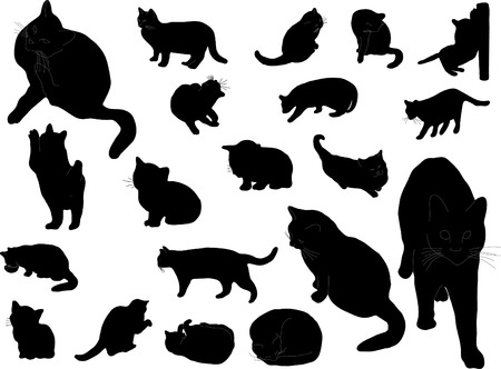animal teeth: Twenty silhouettes of the cats