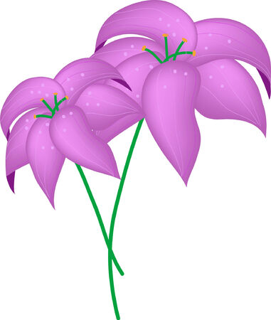 flora vector: Vector of two violet flowers