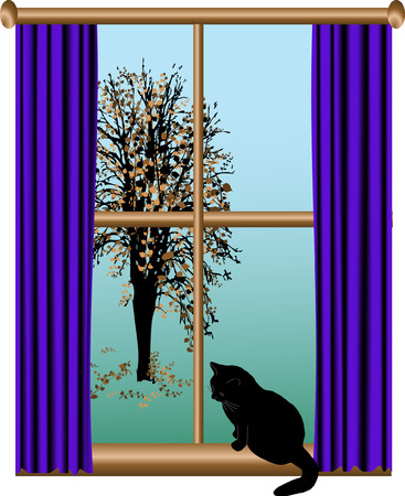 Cat sitting on the window Vector
