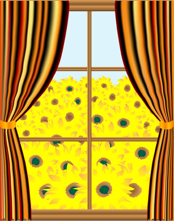 window sill: Vector illustration of windows with sunflowers Illustration