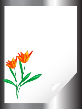 bended: Bended blank paper with tulips Illustration