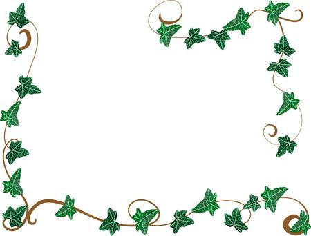 yedra: Frame de Ivy