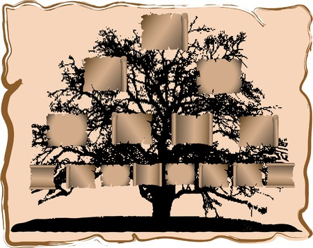 Vector illustration of genealogical tree Vector