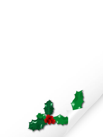 Vector illustration of paper with holly Vector