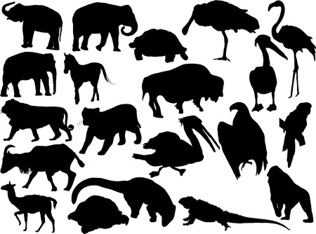 Vector silhouettes of miscellaneous animals Vector