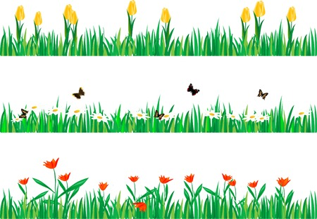 Three borders with grass and flowers Vector