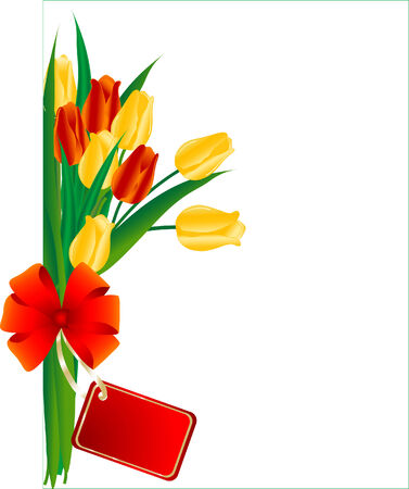 Bouquet of red and yellow tulips Vector