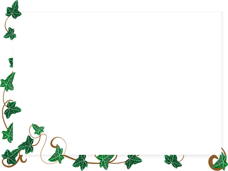 ivy: Vector illustration of page with ivy leaves