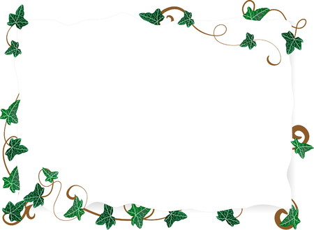 Vector illustration of page with ivy leaves Vector