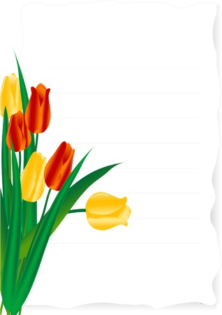 Vector illustration of page with tulips Vector