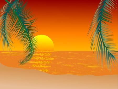 Sunset on the beach - vector illustration