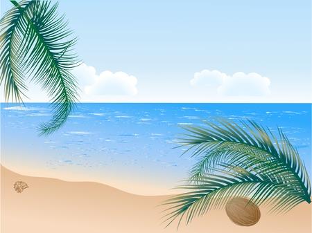 Summer beach with palms - vector illustration Vector