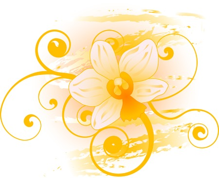 Abstract floral background con orchidee Vettoriali