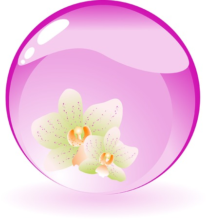 Abstract floral background with orchid Vector