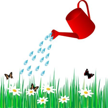 plantes aquatiques: Arrosage de la pelouse peut eau