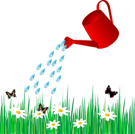 watering can: Watering can water the grass