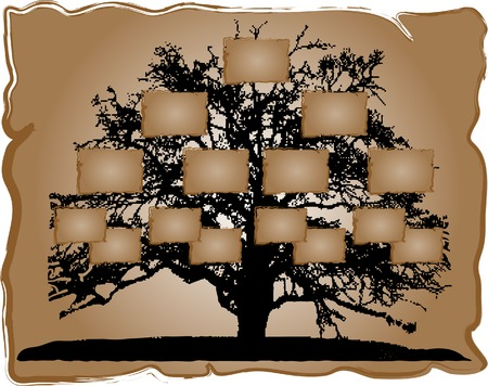 black family: Vector illustration of genealogical tree