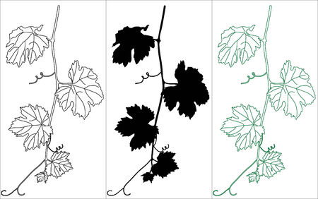 Vine leaves in three colors Stock Vector - 5466195