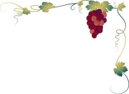 hag: Corner with the bunch of grapes Illustration