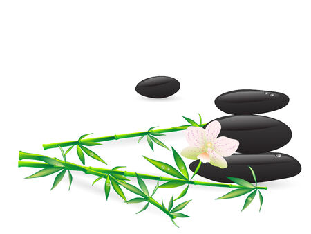 Wellness stones with flowers - vector illustration