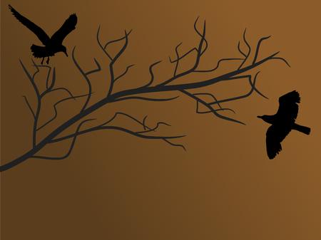 fantasize: Dos p�jaros en la rama de