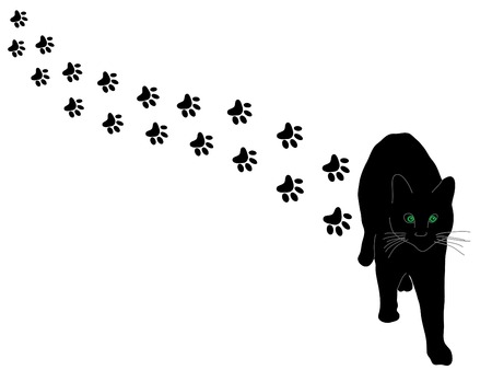 Black cat and paws - vector illustration