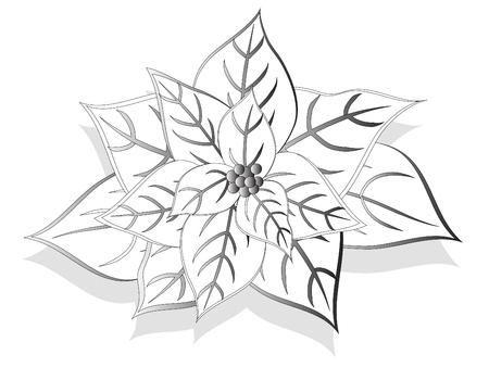 Flor de Navidad de blanco y negro - ilustraci�n vectorial  Foto de archivo - 6081207