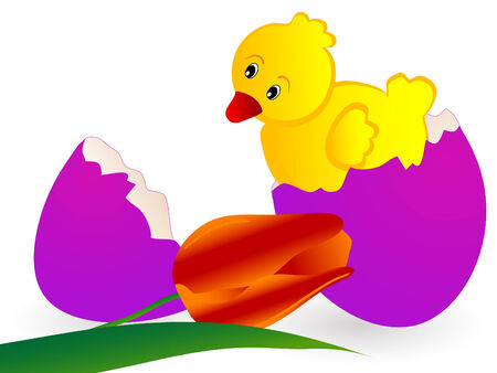 Spring easter background with eggs - illustration Vector