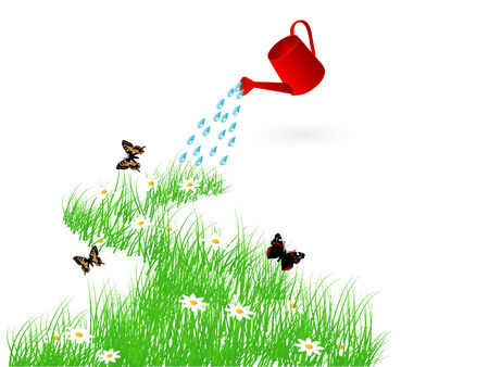 watering plants: Grass and the watering can