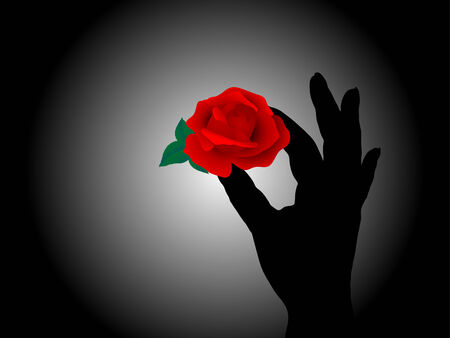 red rose black background: Hand holding the red rose