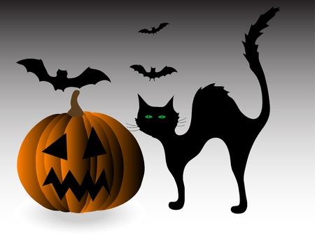 Black cat and pumpkin  Vector