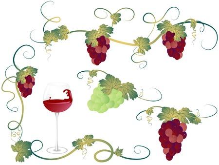 wijnbladeren: Elementen voor ontwerp met wijn stok bladeren en druiven